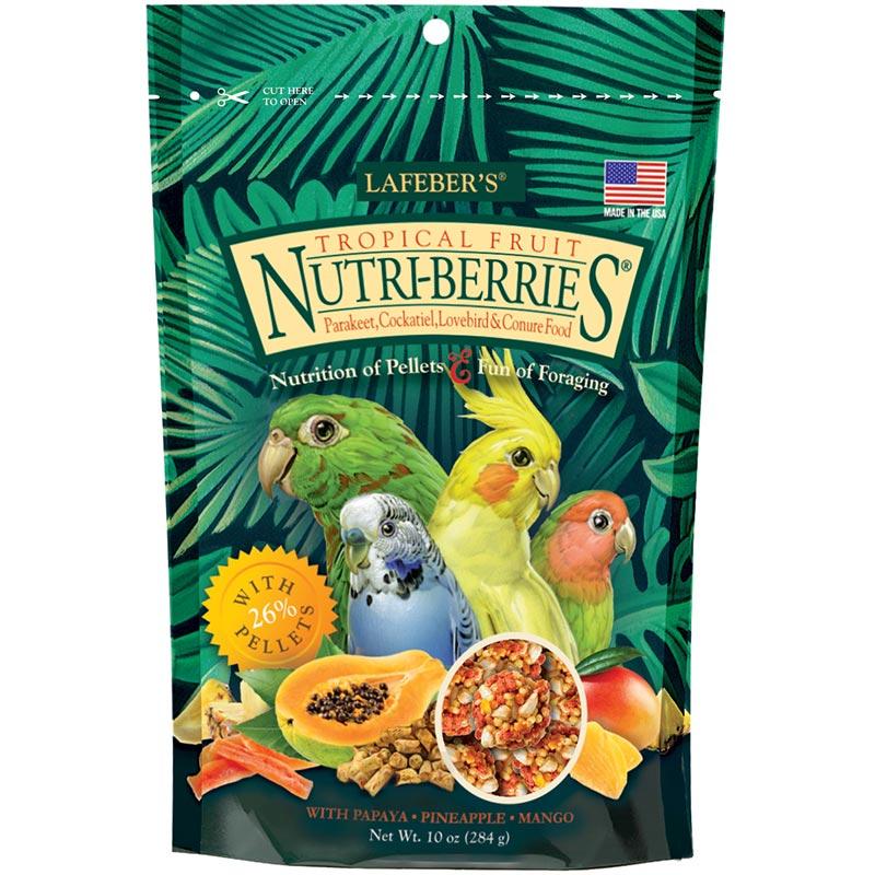small bird Tropical Nutri-Berries