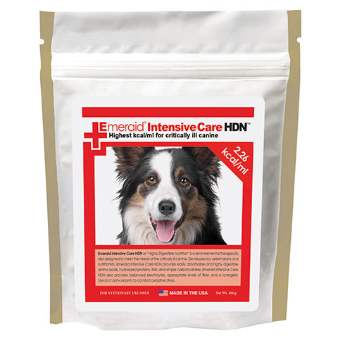 Canine Intensive Care HDN