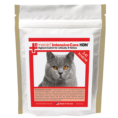 Feline Intensive Care HDN